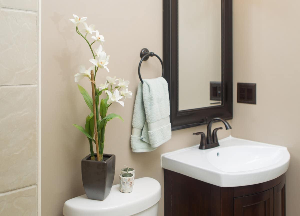 Зачем заводить в ванной растения